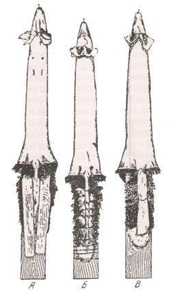 особ обр лисицы3