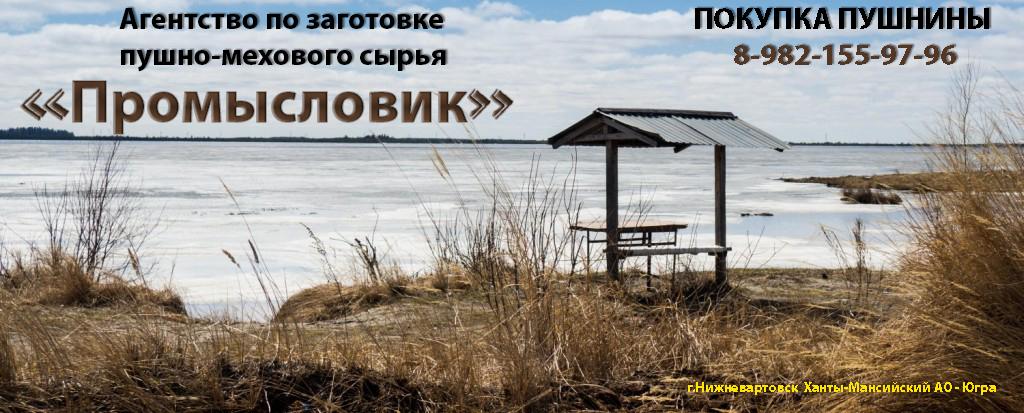 """Агентство по заготовке пушно-мехового сырья """"Промысловик"""""""